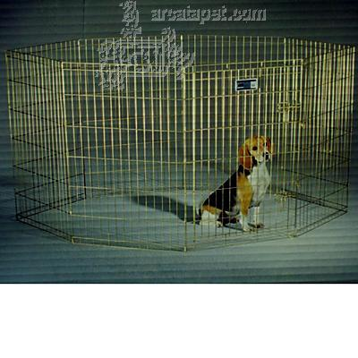 Puppy Folding Exercise Pen 36 inch