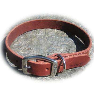 Circle T Latigo Single Layer Leather Dog Collar 22 inch