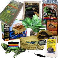 Reptile Miscellaneous