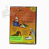 DVD#4 teach your Parrots Advanced Parrot Tricks
