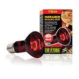 Exo Terra Heat Glo Infrared Terrarium Bulb 75 Watt