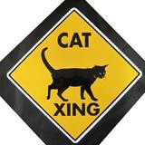 Sign Cat Xing 12x12 inch Yellow Aluminum