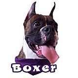 6-inch Vinyl Dog Decal Boxer Brindle Picture
