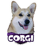 6-inch Vinyl Dog Decal Corgi Picture