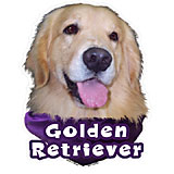 6-inch Vinyl Dog Decal Golden Retriever Picture