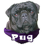 6-inch Vinyl Dog Decal Pug Black Picture