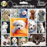 Arf Art Dog Sticker Pack Miniature Poodle