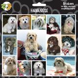 Arf Art Dog Sticker Pack Havanese