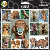 Arf Art Dog Sticker Pack Vizsla