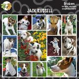 Arf Art Dog Sticker Pack Jack Russell Terrier