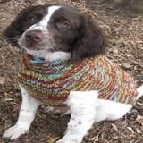 Handmade Dog Sweater Wool Vintage Knit XXXLarge