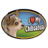 Dog Breed Image Magnet Oval Chihuahua Multi-colored