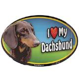 Dog Breed Image Magnet Oval Dachshund