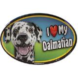 Dog Breed Image Magnet Oval Dalmatian