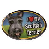 Dog Breed Image Magnet Oval Scottish Terrier