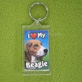 Plastic Keyring Beagle