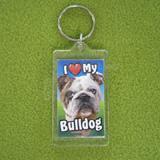 Plastic Keyring Bulldog
