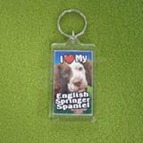 Plastic Keyring English Springer