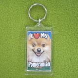 Plastic Keyring Pomeranian