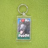 Plastic Keyring Black Poodle