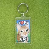 Plastic Keyring Cat Tabby Orange
