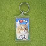 Plastic Keyring Cat Main Coon Orange