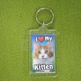 Plastic Keyring Kitten Mix Orange