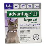 Bayer Advantage II Cat 10-18 pound 4-pack Flea Control