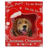 E&S Imports Shatterproof Animal Ornament Golden Retriever