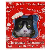 E&S Imports Shatterproof Animal Ornament Tuxedo Cat