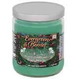 Pet Odor Eliminator Evergreen and Berries Candle