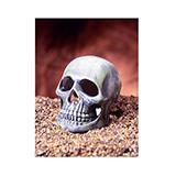 Skull Aquarium Ornament