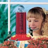 Perky Pet Hummingbird Feeder, Window