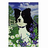 GR8 Dogs Border Collie Garden Flag