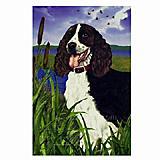 GR8 Dogs Springer Spaniel Garden Flag