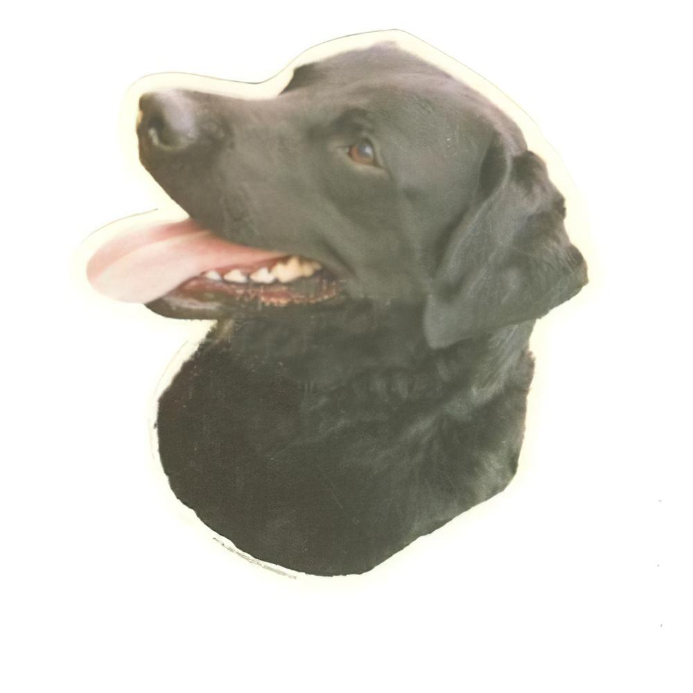 Double Sided Dog Decal Labrador Retriever Black