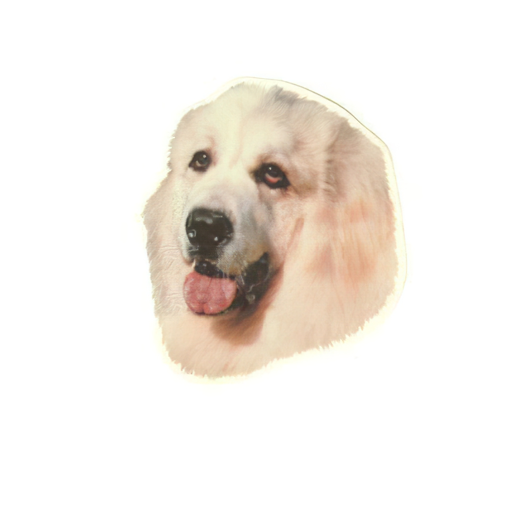 Double Sided Dog Decal Great Pyrenees