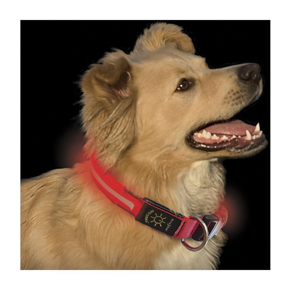 Nite Ize Night-Dawg Lighted LED Dog Collar Red Large