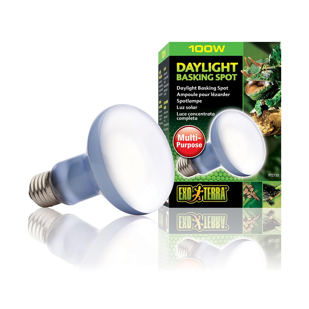 100 Watt Daylight Basking Terrarium Bulb from Exo Terra