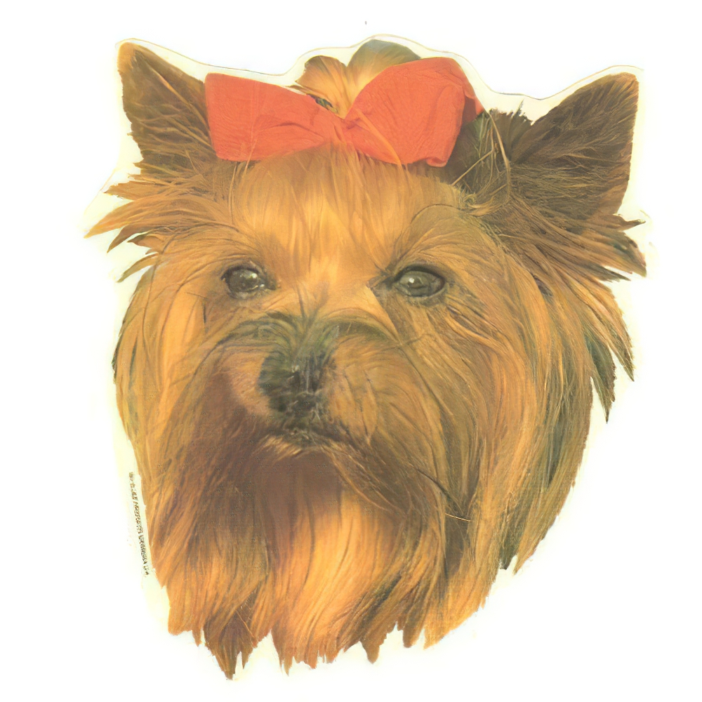 Double Sided Dog Decal Yorkshire Terrier