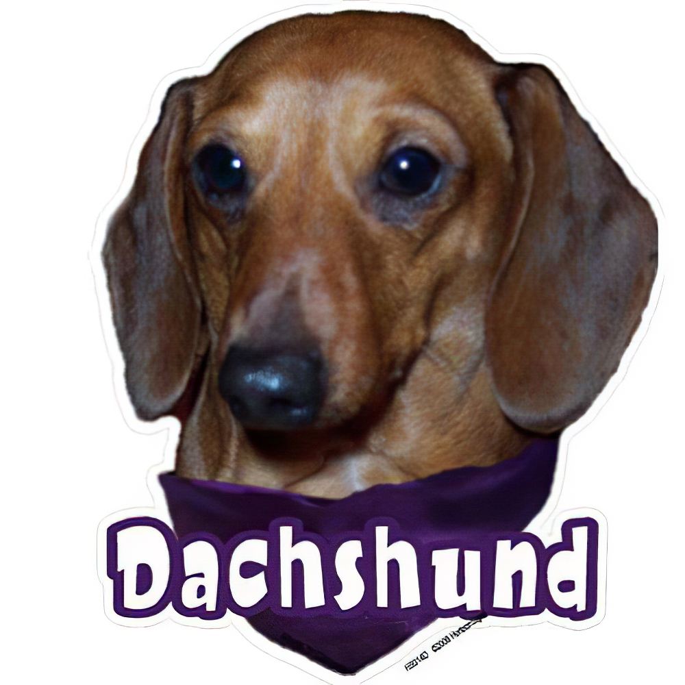 6-inch Vinyl Dog Decal Dachshund Red Picture