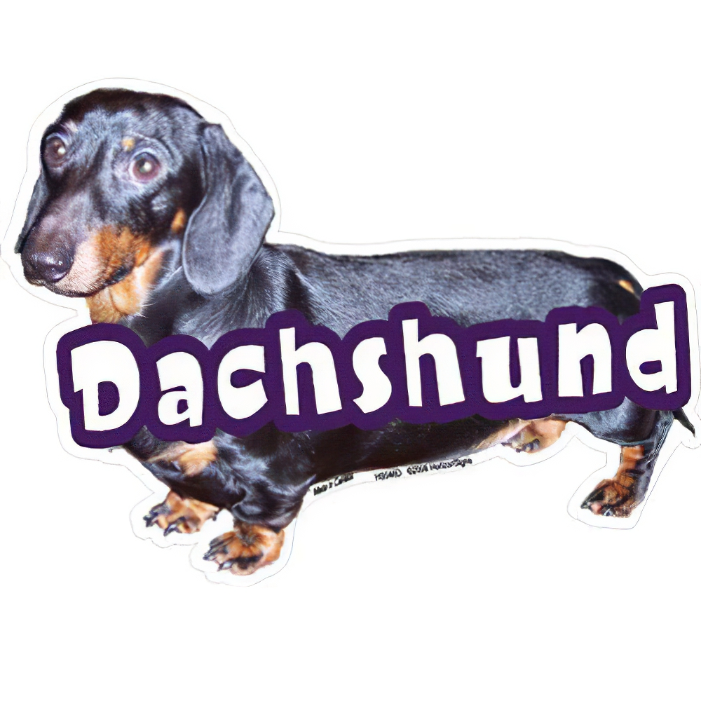 6-inch Vinyl Dog Decal Dachshund Black/Tan Picture