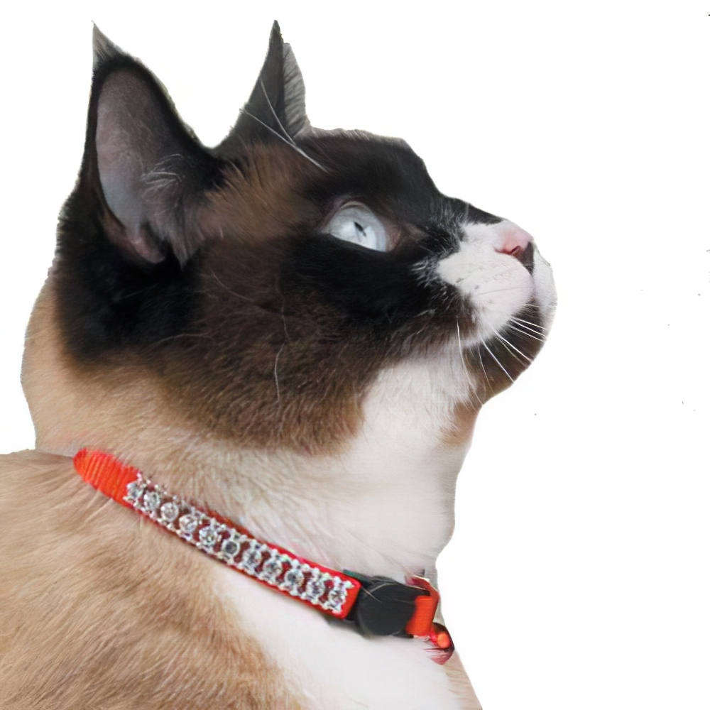 Cat Collar Rhinestones Red