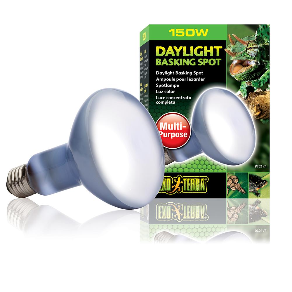 150 Watt Daylight Basking Terrarium Bulb from Exo Terra