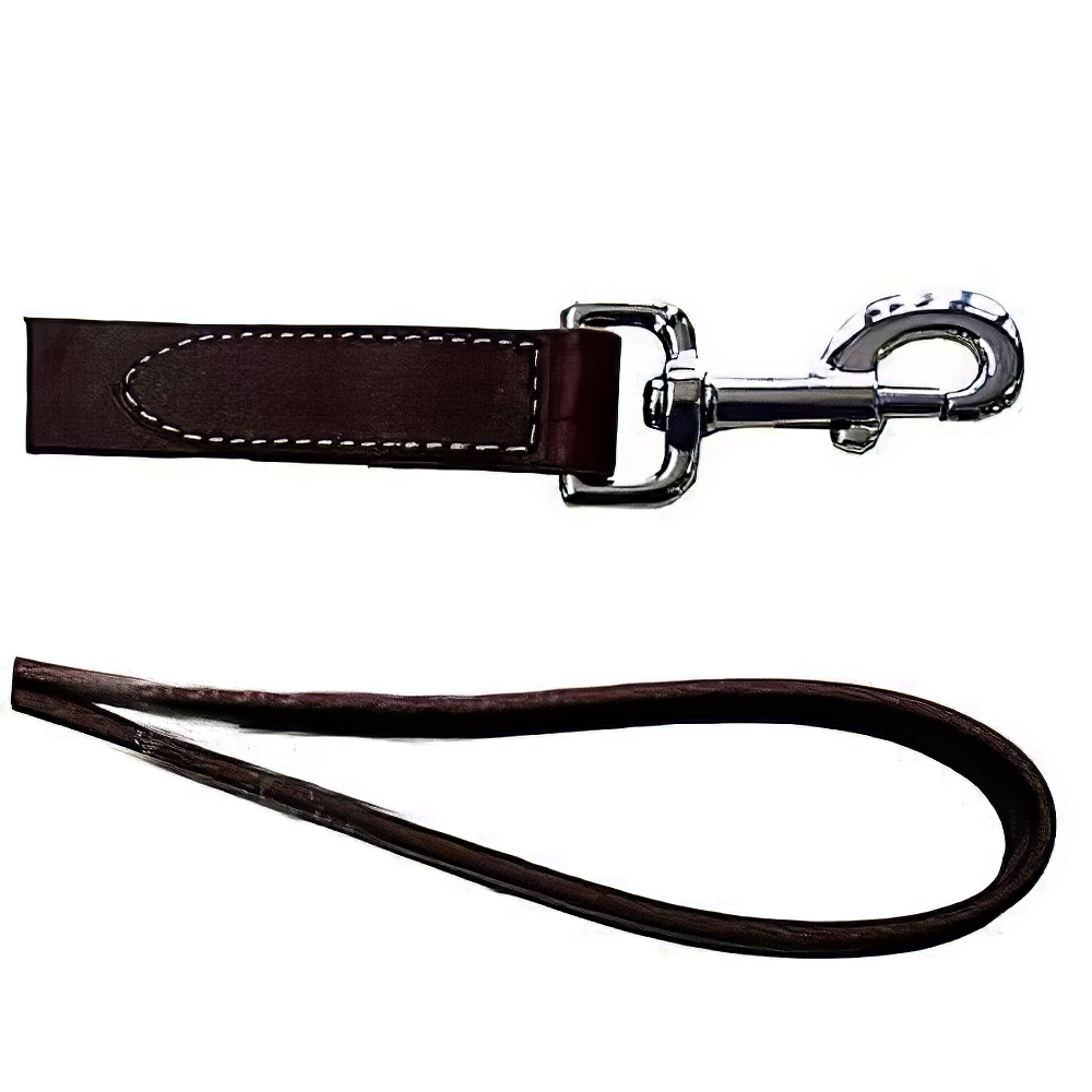 Circle T Leather Dog Leash 4 foot 3/4 inch wide