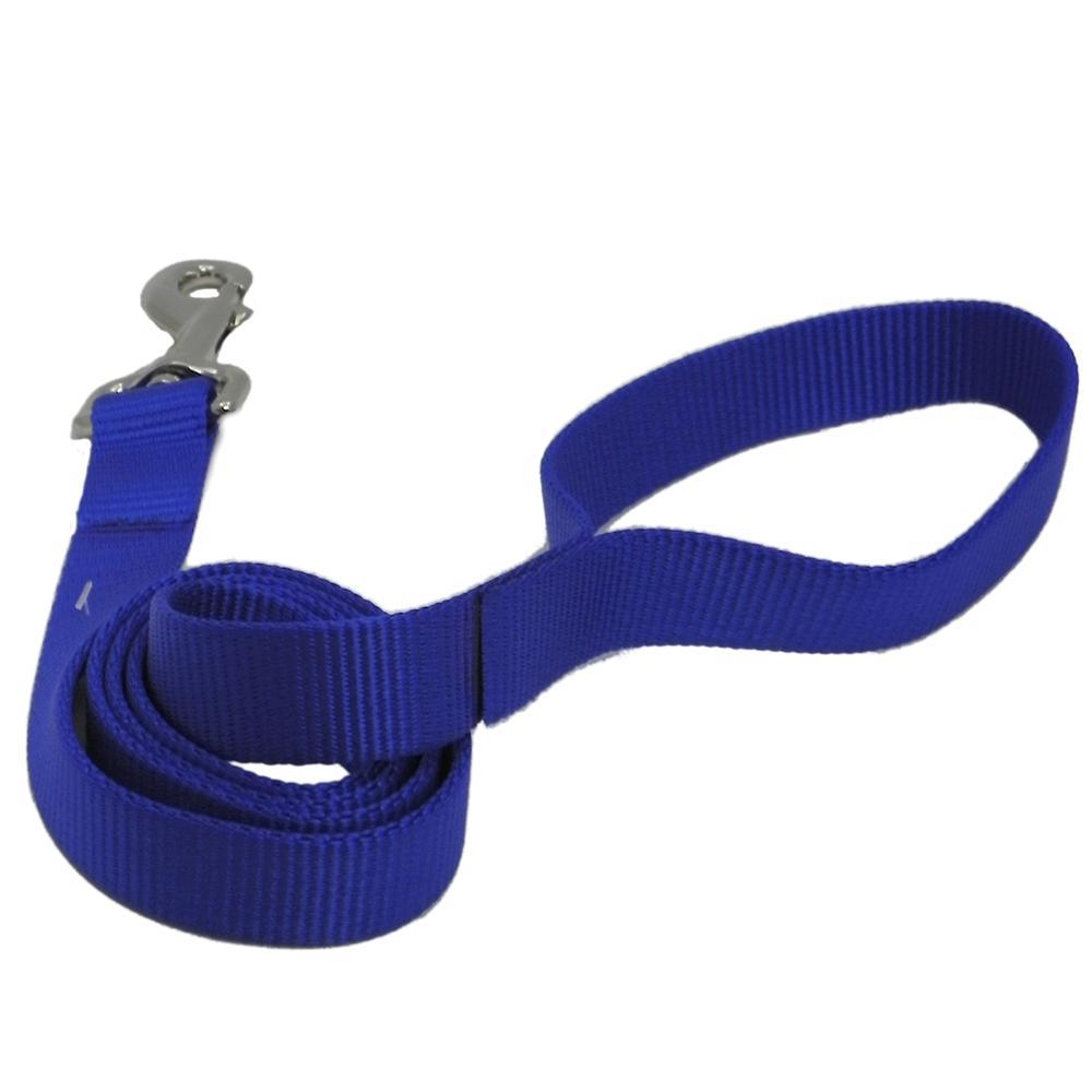 Nylon Dog Leash 1-inch x 4 foot Blue