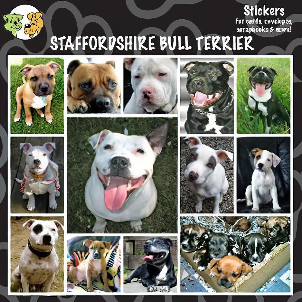 Arf Art Dog Sticker Pack Staffordshire Terrier