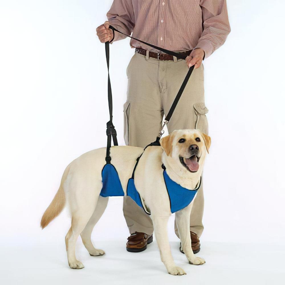 Lift & Lead Dog Harness Large