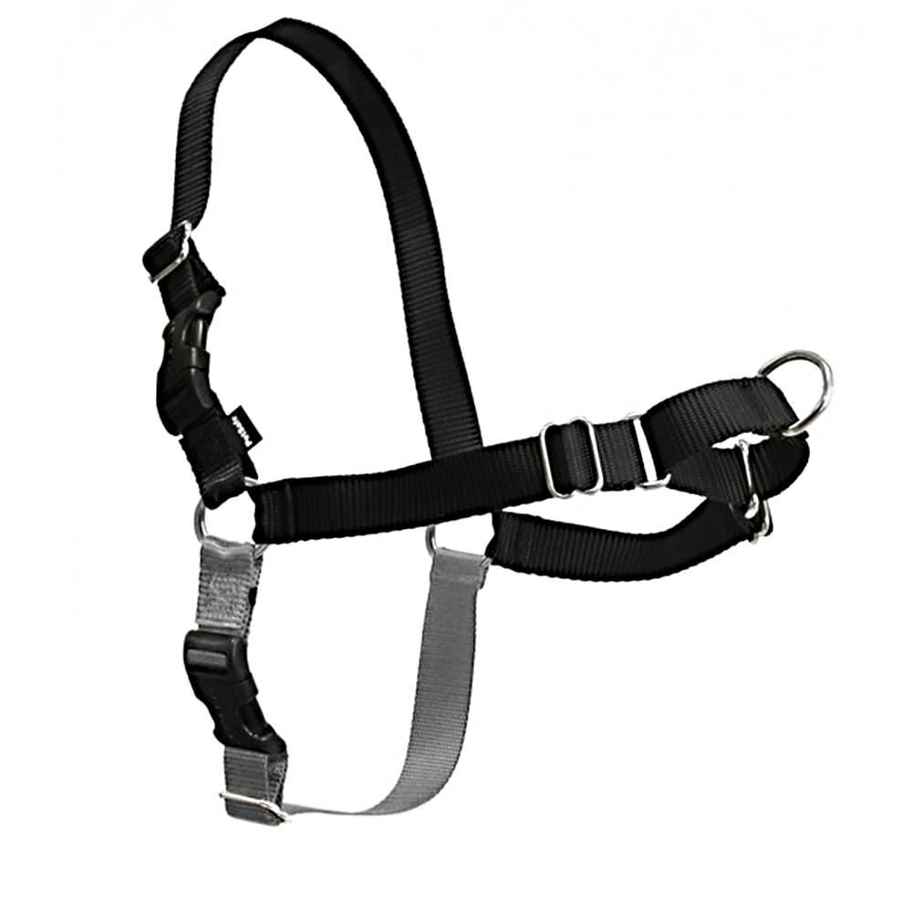 Easy Walk Dog Harness Tweener Medium Large Black