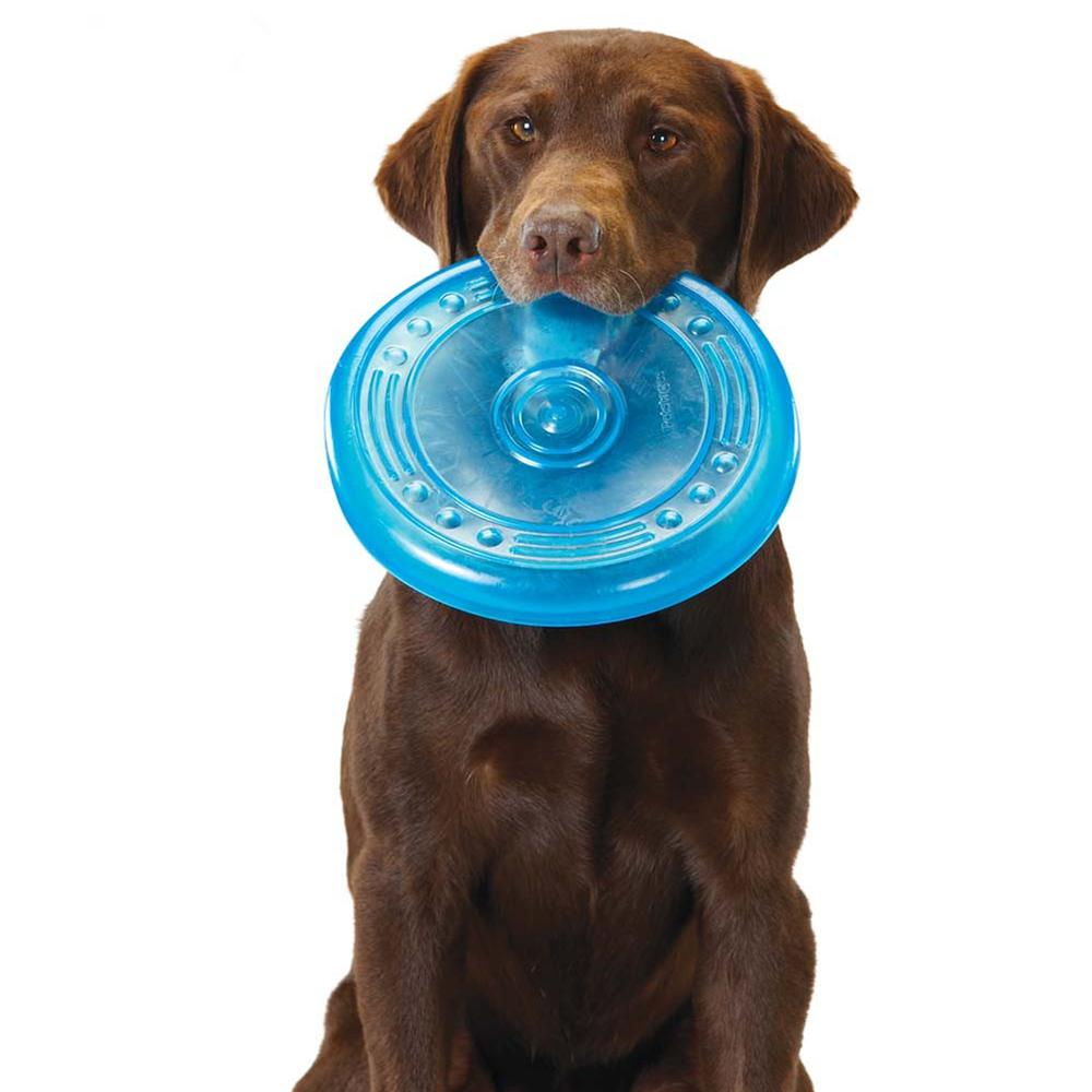 Pet Stages Orka Flyer Floating Disc for Dogs